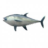 Mô hình cá ngừ bằng composite cao cấp
