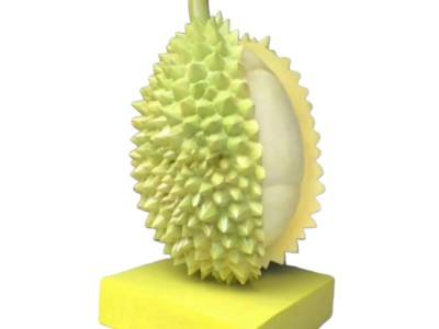 Mô hình quả sầu riêng bằng composite