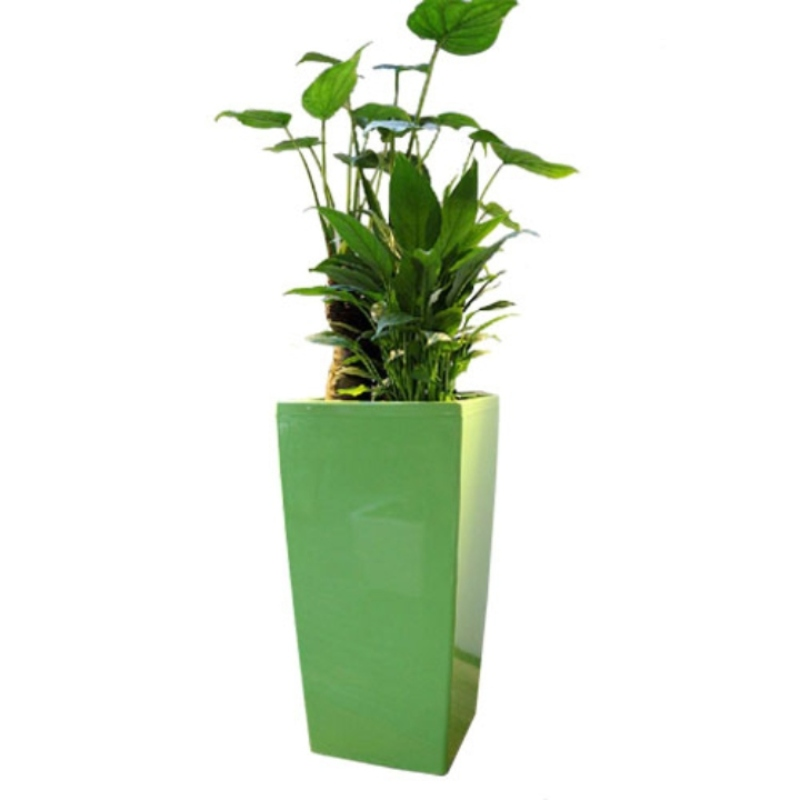 Chậu hoa composite cao cấp với hệ thống tự tưới nước