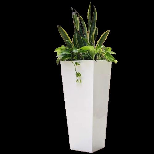 Chậu trồng cây composite trụ vuông